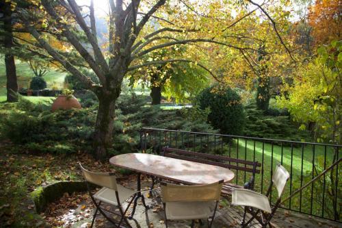 Glycine terrasse